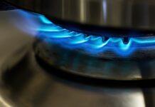 jaką kuchenkę elektryczno-gazową kupić