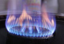 ranking płyt gazowych 2021